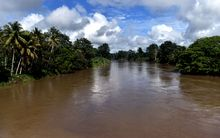 A photo taken on September 3, 2014 shows a view of the river near the town of Malalaua in the jungle of Papua New Guinea.