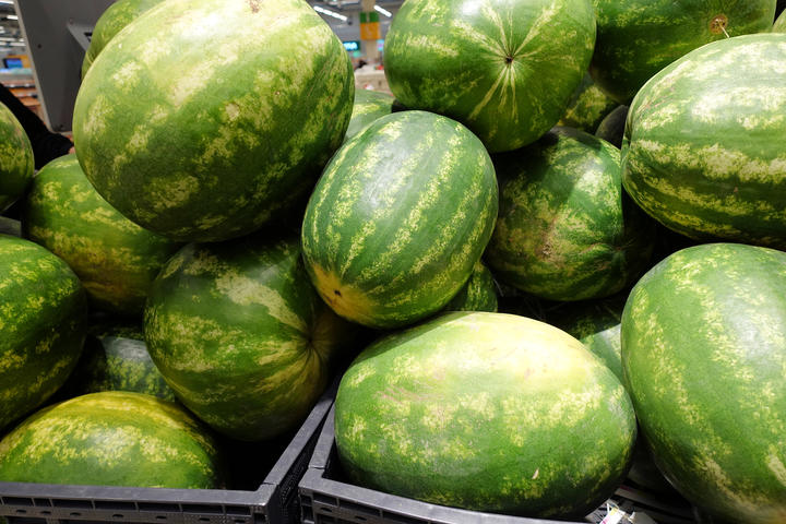 Water melon fruit bulk in fresh market, big ellipsoid-shaped and green colored tropical fruit