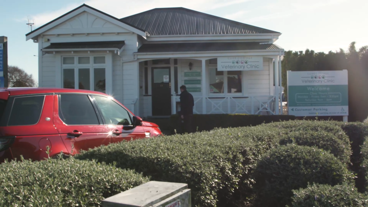 Clive Cottage Vet Clinic in Hawke's Bay.