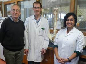 A picture of Neil Broom, Kelly Wade and Samantha Rodrigues with a model of a human spine