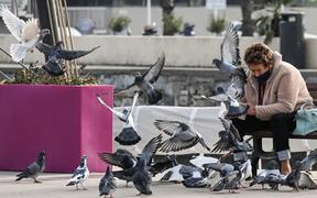 A woman feeds pigeons on November 6, 2020 in Palavas-les-Flots, near Montpellier, southern France, during the national lockdown aimed at containing the spread of Covid-19, caused by the novel coronavirus.