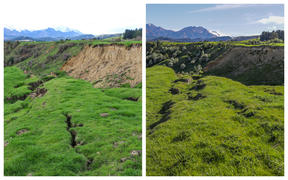 Contrast between land in 2017 and 2020 on farm belonging to Henry and Olivia Pinckney in North Canterbury