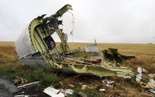Flight MH17 was shot down over east Ukraine in July with the loss of 298 lives.