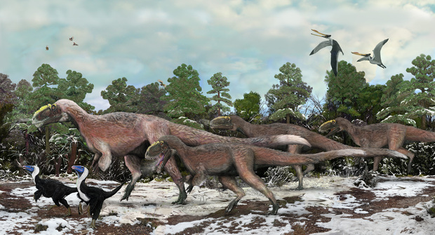 Border patrol. A nine-metre-long early relative of T. rex that stalked the Early Cretaceous of northern China, Yutyrannus was the first truly terrifying feathered dinosaur discovered. Its fluffy covering may have helped keep it warm in winter months.