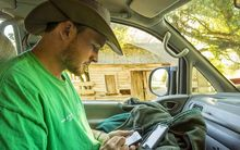 Farmers can use the app to record information about mating on their smartphone.
