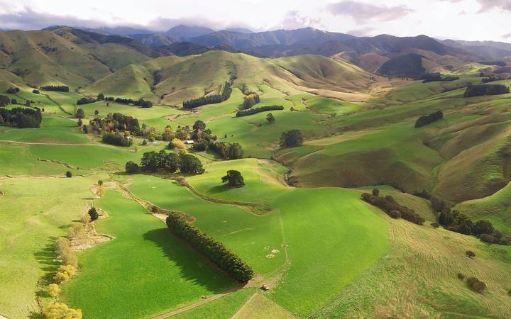 The proposed site for the Wakamoekau community water storage scheme, northwest of Masterton.