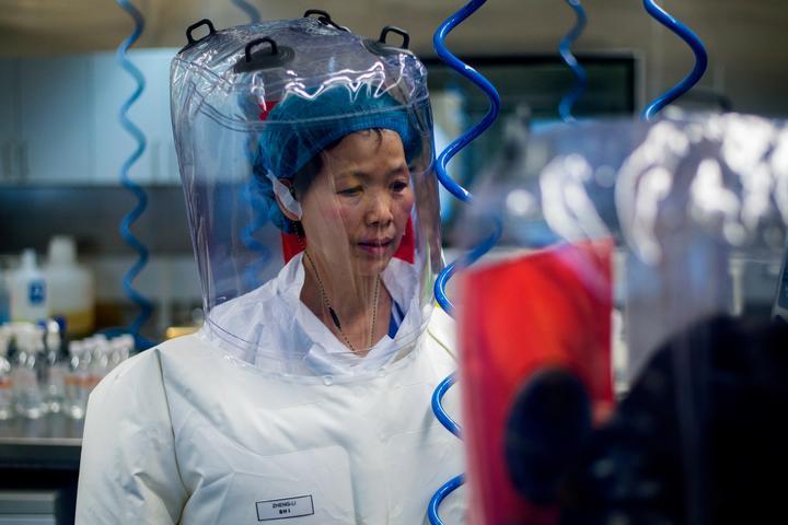Chinese virologist Shi Zhengli, inside the P4 laboratory in Wuhan.