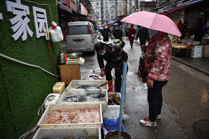 A vendor selling fish and turtles at a market in Wuhan where the coronavirus was first traced. On 24 January 2020.
