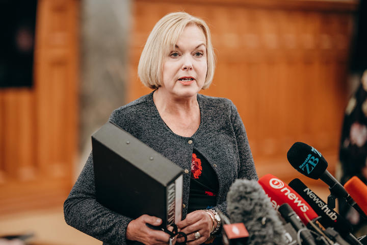 National leader Judith Collins  17/02/21