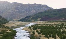 High-country farmland invaded by exotic pine trees, Clarence River, near Hanmer Springs.