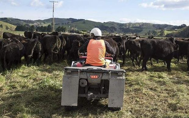 Quad bike safety is improving, Federated Farmers says.