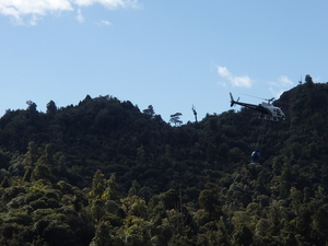 A helicopter with a bait bucket underneath flies over the Tongariro Conservation Area, where 1080 is regularly used to protect kiwi and whio