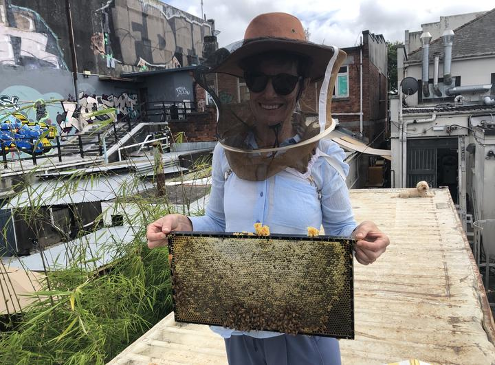 Sharon Brettkelly gets a close up look at an urban bee hive.