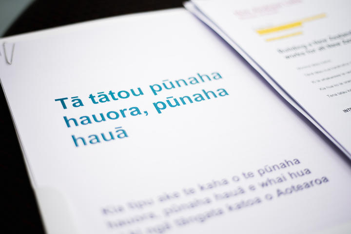 A document setting out the government's restructure of New Zealand's health system.