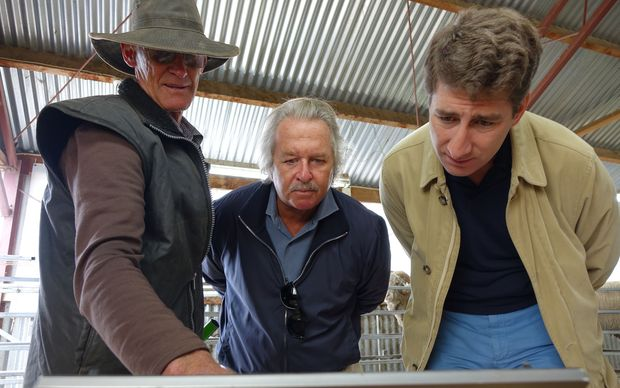 The owner of Earnscleugh High Country Satation, Alistair Campbell, shows Italian textile magnate Dr Pier-Luigi Loro Piana, and Loro Piana CEO Matthieu Brissett how computer technology has helped breed Merino sheep.