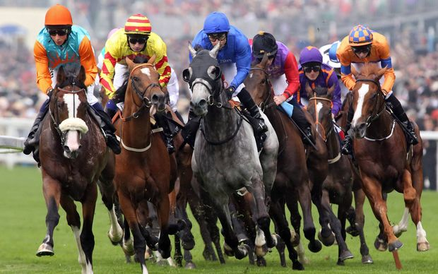 The Ascot Gold Cup