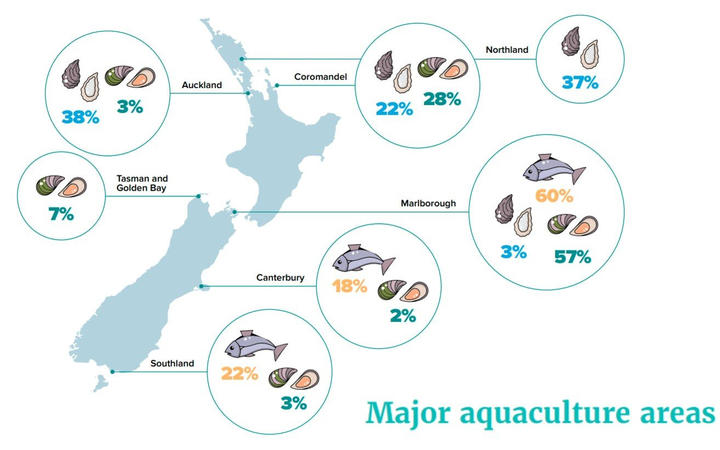 New Zealand salmon and mussels produce.