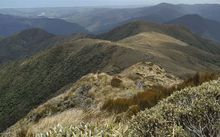 Tararua Mountains