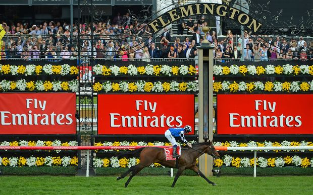 Melbourne Cup winner Protectionist