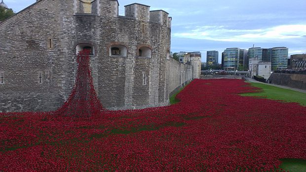A sea of red poppies in grassed moat at Tower of London