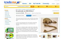 Online auction company Trade Me said it only hosted legal sales of moa bones.