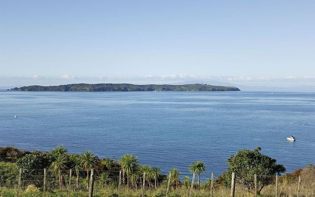 View from Shakespear Regional Park towards Tiritiri Matangi Island.