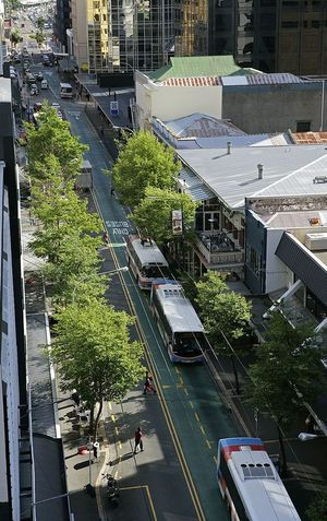 An engineering expert says several reports on Willis Street raised safety issues.
