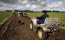 WorkSafe said in May that an average of five people a year were killed in quad bike accidents on farms, and a further 850 injured.