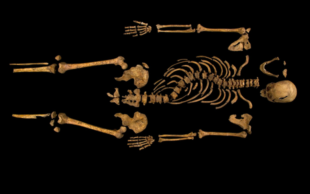 The skeleton of Richard III who died at the Battle of Bosworth - the last English monarch to die in battle.