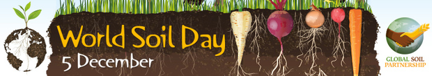 The official banner, produced by the United Nations Food and Agriculture Organization, to celebrate World Soil Day 2014.