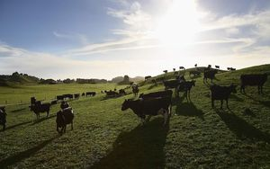 John Key says New Zealand is prepared to find a way to reduce greenhouse gas emissions from its agriculture.