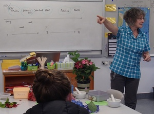 Science teacher Terry Burrell, from Onslow College in Wellington, has won the 2014 Prime Minister's Science Teacher prize. Here she is leading a lesson relating to the colour of flowers, and acids and bases.