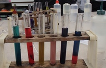 In this classroom science experiment Year 10 students liquified different colour flowers, and then added acids and bases to the test tubes to observe what happened to the colour.