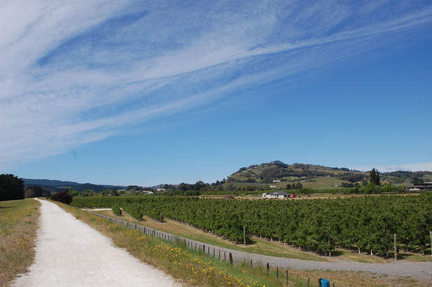 Havelock North to Haumoana cycle trail