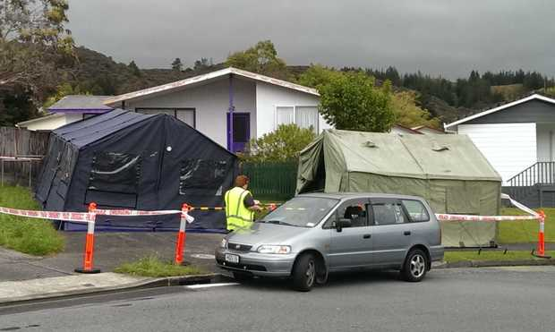 The Blueberry Grove address in Upper Hutt, where last night's incident took place.