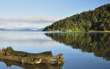 Iwi say a Waitangi Tribunal report paves the way for compensation for decades of Crown mis-use of Lake Waikaremoana.