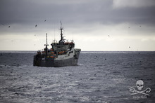 The 'Thunder', which Sea Shepherd claims is illegally fishing in the Southern Ocean.