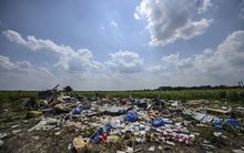 The site of the downed Malaysia Airlines flight MH17 in July this year.