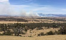A grassfire outside the Victorian town of Moyston on 2 January 2015 in Australia.