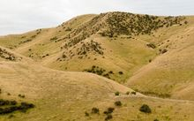 Dry hills in the South Island (file photo)