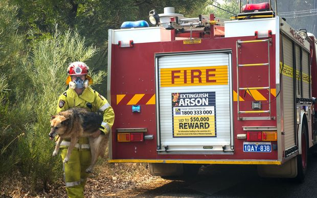 A file photo shows a firefighter responding to a bushfire in the Perth Hills and Parkerville region in Perth almost exactly one year ago, on 12 January 2014.