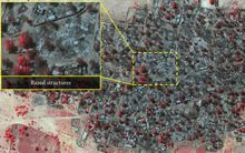 Amnesty International says these two infrared satellite images show the scale of last week's attack on the village of Doron Baga. It says the images - taken on 2 January (top) and 7 January (bottom) - show densely packed structures and tree cover (seen in red) before and after the village was razed.
