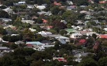 Auckland housing, pictured from Mt Eden.