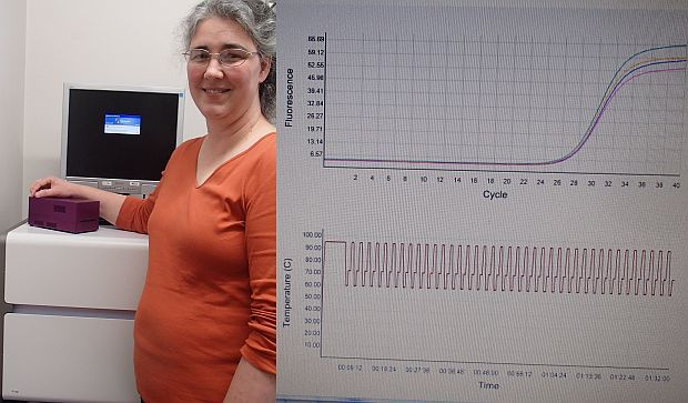 Jo-Ann Stanton holds the Freedom4 mobile PCR device, which sits on top of a standard lab-based PCR machine (left), and a typical output showing the temperature cycles (bottom) and the fluoresence curve which relates to the amount of DNA in the sample.