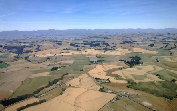 The impact of dry conditions on unirrigated land, south of Timaru.