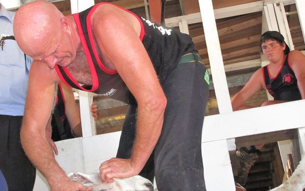 NZ shearing legend David Fagan at Geyserland Shears at the Rotorua A&P Show.