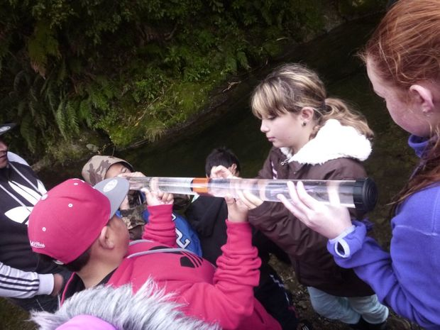 Students from Koraunui School measure water clarity at the Catchpool Valley Stream.