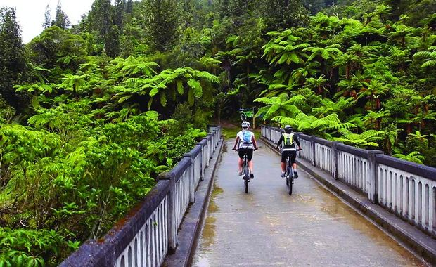 A section of the Mountains to Sea cycle trail, which runs from Mt Ruapehu to Whanganui.