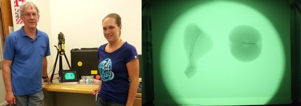 A photo of Andy Edgar and Nicola Winch with the portable X-ray detector, and an image of a broken chicken leg and apple with a nail in it