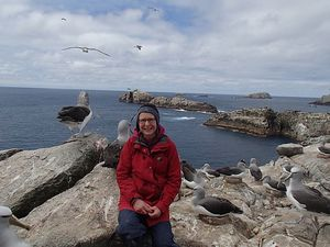 Our Changing World producer Alison Ballance, on Proclamation Island in the Bounty Islands group, with Salvin's albatrosses.